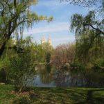 The Pond, Central Park NY, USA
