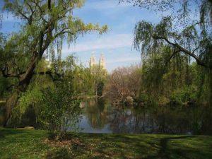 South Pond, Central Park, New York